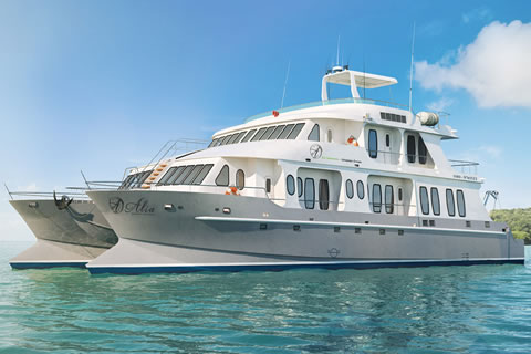 Alia- luxury motor catamaran yacht charter in the Galapagos