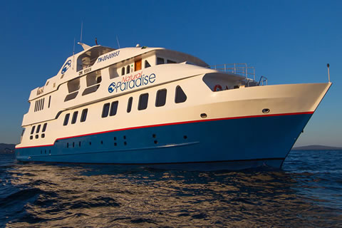 Natural Paradise Private Yacht Charter in the Galapagos